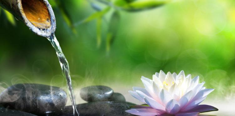Relax Zen Spa Meditation Calm