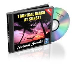 tropical beach nature sound